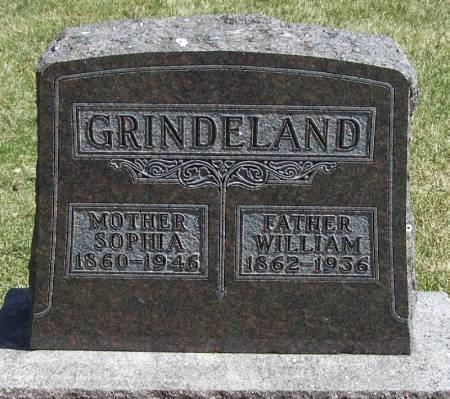 GRINDELAND, WILLIAM - Winneshiek County, Iowa | WILLIAM GRINDELAND