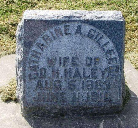 GILLEECE HALEY, CATHERINE A. - Winneshiek County, Iowa | CATHERINE A. GILLEECE HALEY