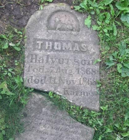 HALVORSON, THOMAS - Winneshiek County, Iowa | THOMAS HALVORSON