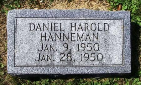 HANNEMAN, DANIEL HAROLD - Winneshiek County, Iowa   DANIEL HAROLD HANNEMAN