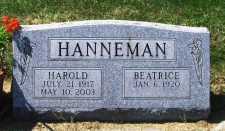 HANNEMAN, HAROLD - Winneshiek County, Iowa   HAROLD HANNEMAN