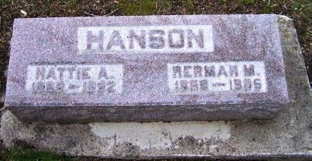 HANSON, HERMAN M. - Winneshiek County, Iowa | HERMAN M. HANSON