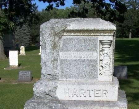 HARTER, JOHN FAMILY STONE - Winneshiek County, Iowa | JOHN FAMILY STONE HARTER