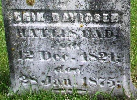 HATLESTAD, ERIK DAVIDSEN - Winneshiek County, Iowa | ERIK DAVIDSEN HATLESTAD