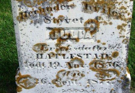 HATLESTAD, JULIA ERICKSDATTER - Winneshiek County, Iowa | JULIA ERICKSDATTER HATLESTAD