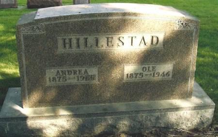 HILLESTAD, ANDREA - Winneshiek County, Iowa | ANDREA HILLESTAD
