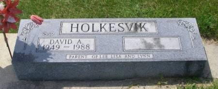 HOLKESVIK, DAVID A. - Winneshiek County, Iowa   DAVID A. HOLKESVIK