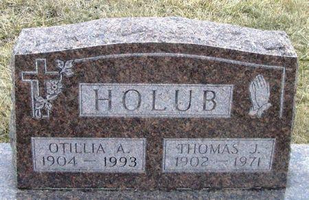 HOLUB, OTILLIA A. - Winneshiek County, Iowa | OTILLIA A. HOLUB