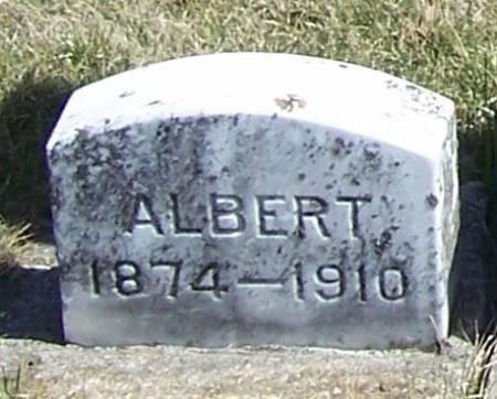 JOHNSON, ALBERT - Winneshiek County, Iowa   ALBERT JOHNSON