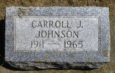 JOHNSON, CARROLL J. - Winneshiek County, Iowa | CARROLL J. JOHNSON