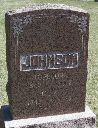 JOHNSON, TORBJORN - Winneshiek County, Iowa | TORBJORN JOHNSON