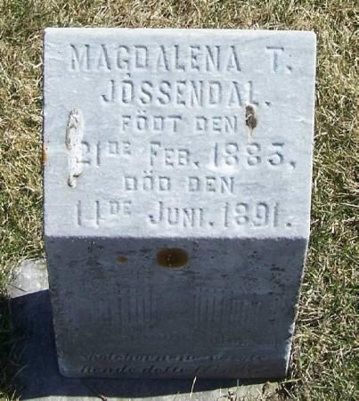 JOSSENDAL, MAGDALENA T - Winneshiek County, Iowa | MAGDALENA T JOSSENDAL