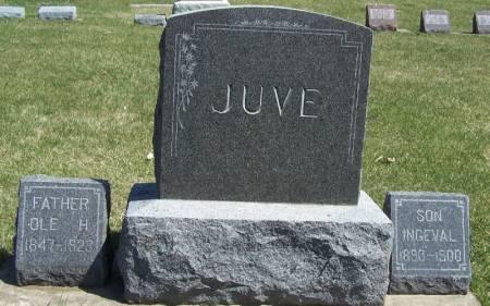 JUVE, OLE FAMILY STONE - Winneshiek County, Iowa   OLE FAMILY STONE JUVE