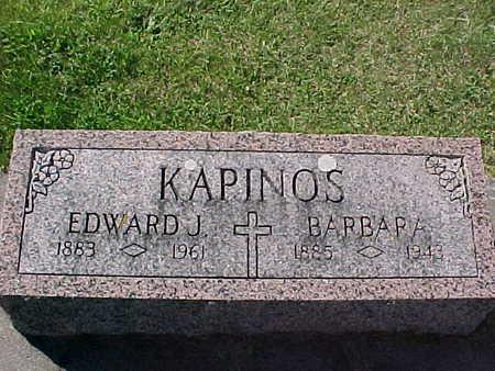 KAPINOS, BARBARA - Winneshiek County, Iowa | BARBARA KAPINOS