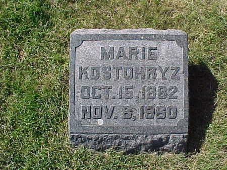 KOSTOHRYZ, MARIE - Winneshiek County, Iowa | MARIE KOSTOHRYZ
