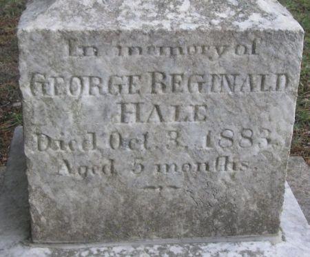 LANE, GEORGE REGINALD HALE - Winneshiek County, Iowa | GEORGE REGINALD HALE LANE