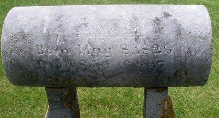 LARSON, ANNE MARIE - Winneshiek County, Iowa | ANNE MARIE LARSON