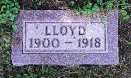 LARSON, LLOYD - Winneshiek County, Iowa | LLOYD LARSON