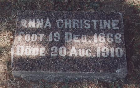 LIEN, ANNA CHRISTINE - Winneshiek County, Iowa | ANNA CHRISTINE LIEN