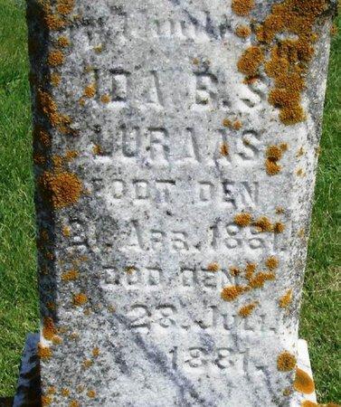 LURAAS, IDA BERTHE S. - Winneshiek County, Iowa | IDA BERTHE S. LURAAS