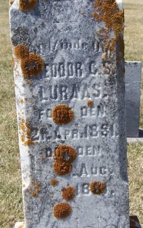 LURAAS, THEODOR C. S - Winneshiek County, Iowa | THEODOR C. S LURAAS