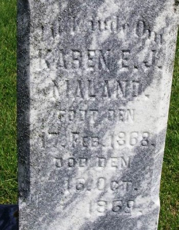 MALAND, KARIN E. J. - Winneshiek County, Iowa | KARIN E. J. MALAND