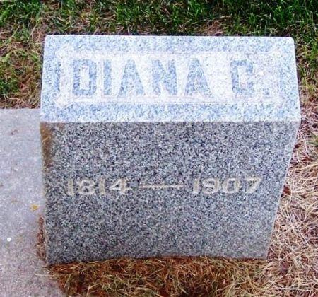 MASON, DIANA C. - Winneshiek County, Iowa | DIANA C. MASON