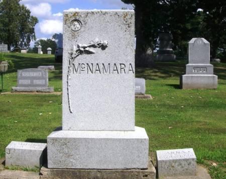 MCNAMARA, JOHN FAMILY STONE - Winneshiek County, Iowa | JOHN FAMILY STONE MCNAMARA