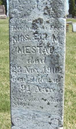 MESTAD, MRS. ELI M - Winneshiek County, Iowa   MRS. ELI M MESTAD