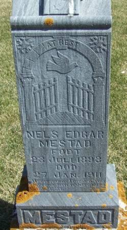 MESTAD, NELS EDGAR - Winneshiek County, Iowa | NELS EDGAR MESTAD