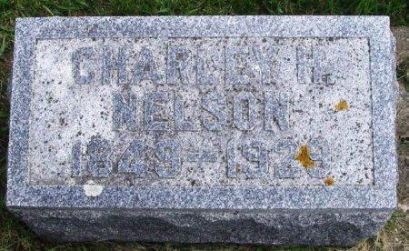 NELSON, CHARLEY H - Winneshiek County, Iowa   CHARLEY H NELSON
