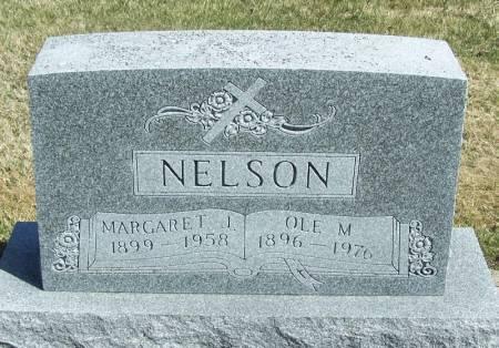 NELSON, OLE M - Winneshiek County, Iowa | OLE M NELSON