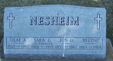 NESHEIM, SARA J - Winneshiek County, Iowa | SARA J NESHEIM