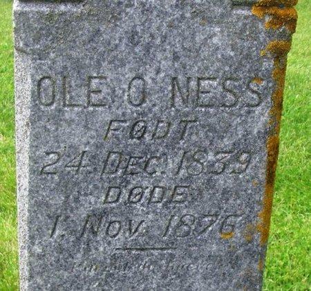 NESS, OLE OLSEN - Winneshiek County, Iowa   OLE OLSEN NESS
