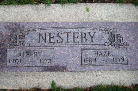 NESTEBY, ALBERT - Winneshiek County, Iowa | ALBERT NESTEBY