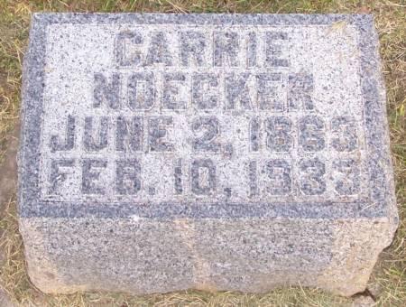 NOECKER, CARRIE - Winneshiek County, Iowa | CARRIE NOECKER