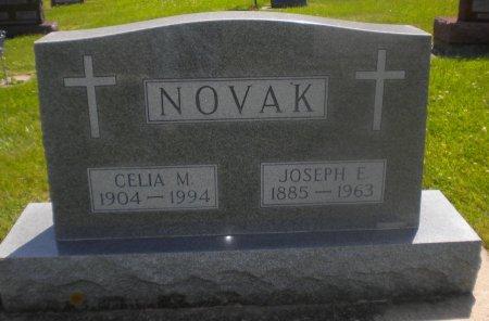 NOVAK, CELIA M. - Winneshiek County, Iowa | CELIA M. NOVAK