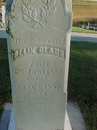 OLAUS, ALLIK - Winneshiek County, Iowa | ALLIK OLAUS