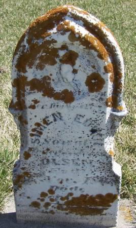 OLSEN, SIMON EDWIN - Winneshiek County, Iowa | SIMON EDWIN OLSEN