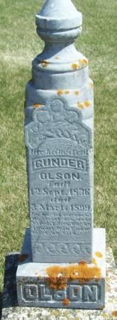 OLSON, GUNDER - Winneshiek County, Iowa   GUNDER OLSON