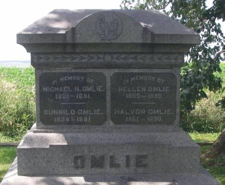 OMLIE, MICHAEL H. - Winneshiek County, Iowa | MICHAEL H. OMLIE
