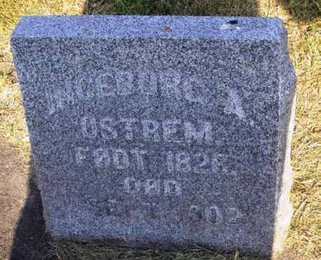 OSTREM, INGEBORG A. - Winneshiek County, Iowa | INGEBORG A. OSTREM