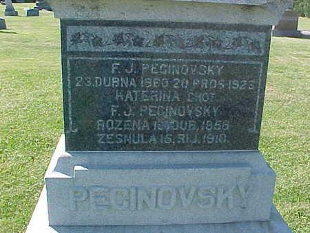 PECINOVSKY, F. J. - Winneshiek County, Iowa | F. J. PECINOVSKY