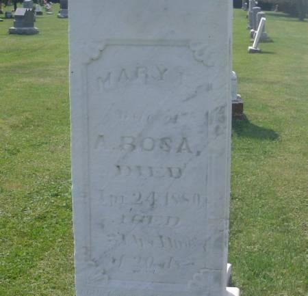 ROSA, MARY E. - Winneshiek County, Iowa | MARY E. ROSA