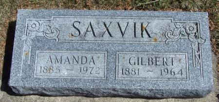 SAXVIK, AMANDA - Winneshiek County, Iowa | AMANDA SAXVIK