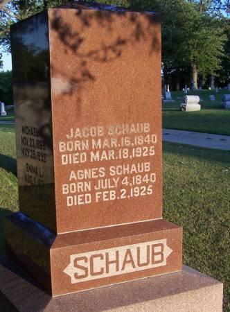 SCHAUB, JACOB - Winneshiek County, Iowa | JACOB SCHAUB