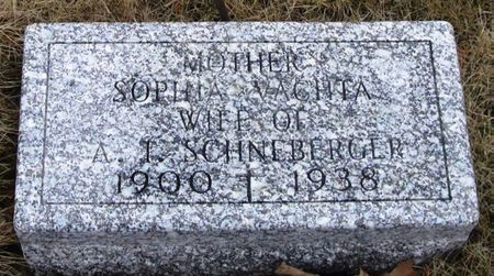 SCHNEBERGER, SOPHIA - Winneshiek County, Iowa | SOPHIA SCHNEBERGER