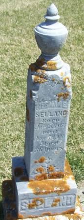 SELLAND, HERMAN E - Winneshiek County, Iowa   HERMAN E SELLAND