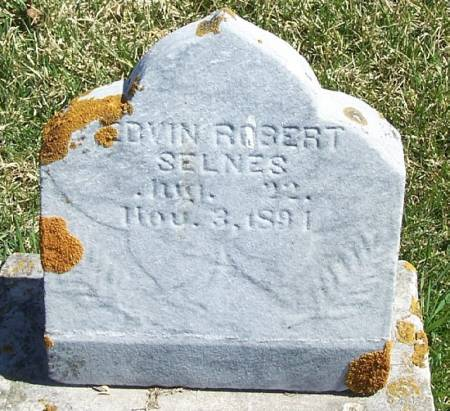 SELNES, EDWIN ROBERT - Winneshiek County, Iowa | EDWIN ROBERT SELNES