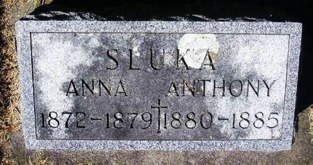 SLUKA, ANNA - Winneshiek County, Iowa   ANNA SLUKA